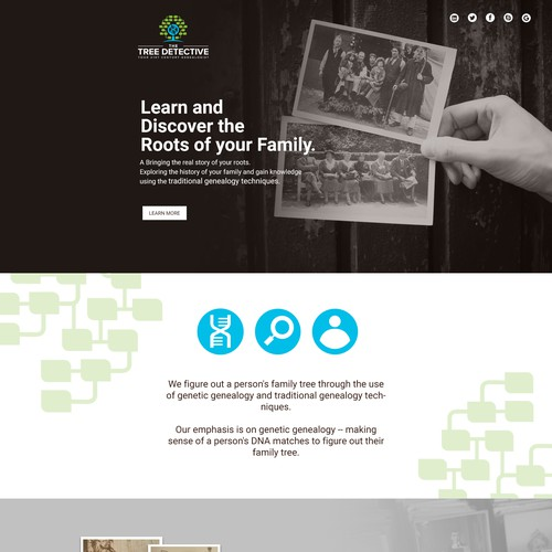 Web Design for The Tree Detective