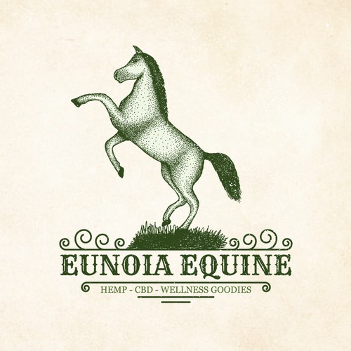 Eunoia Equine fun Eunoia Equine needs a fun and memand memorable and detailed logo