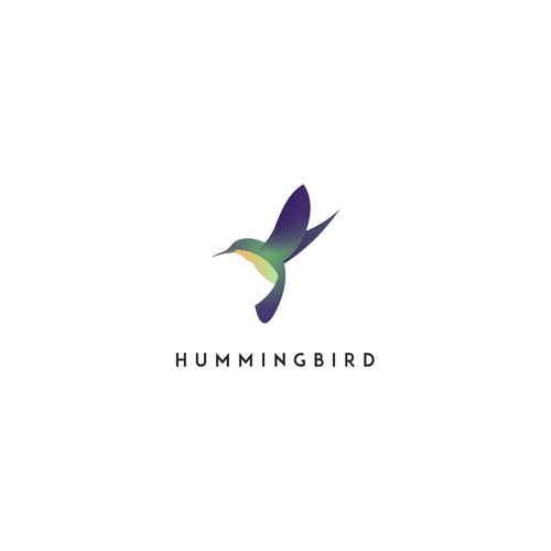 Modern and elegant hummingbird logo