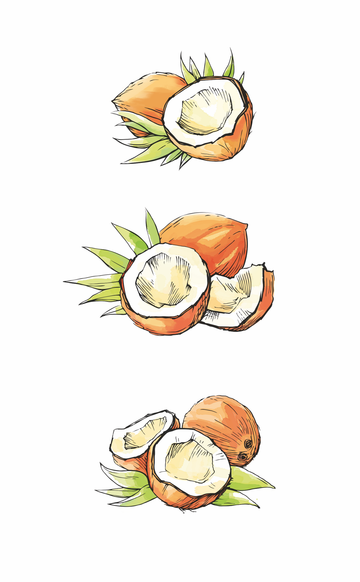 Illustrations for new packaging label