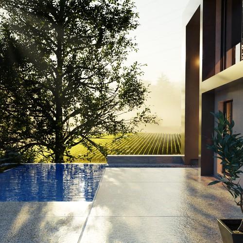 3d render of a vineyard villa