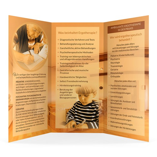 Professional Brochure - Therapy Practice