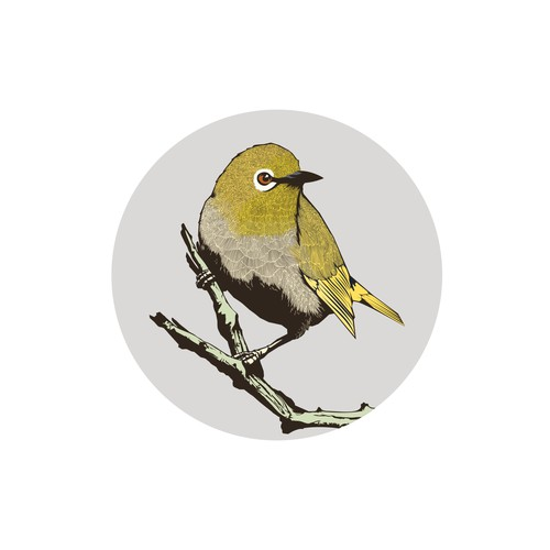 Detailed bird illustration
