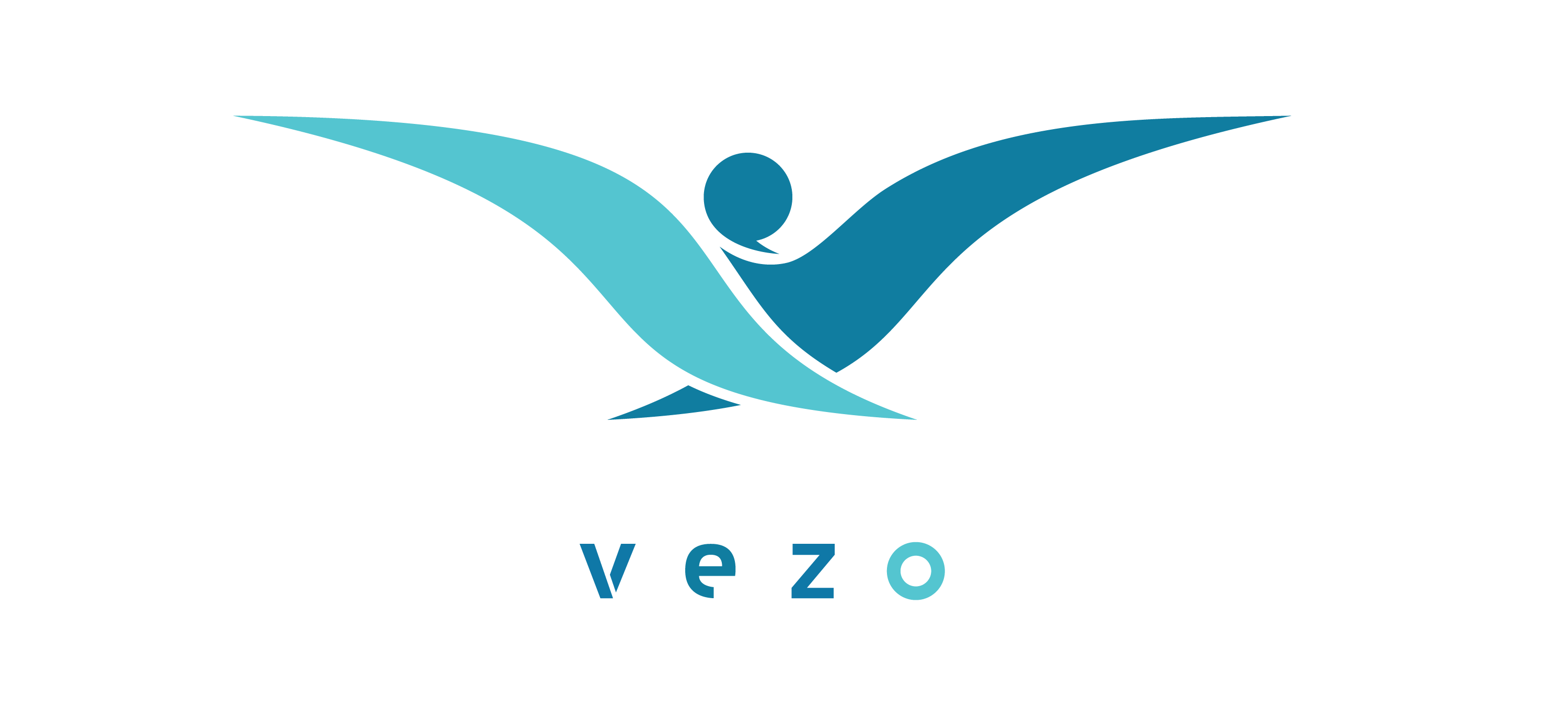 Create a Logo/Business Card/ and Letter Head/PPT template for Vezo