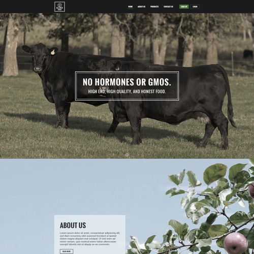 Organic Farm Landing Page