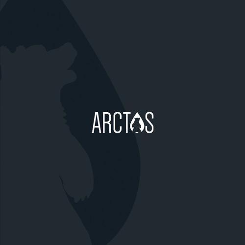 Logo design for Arctos company