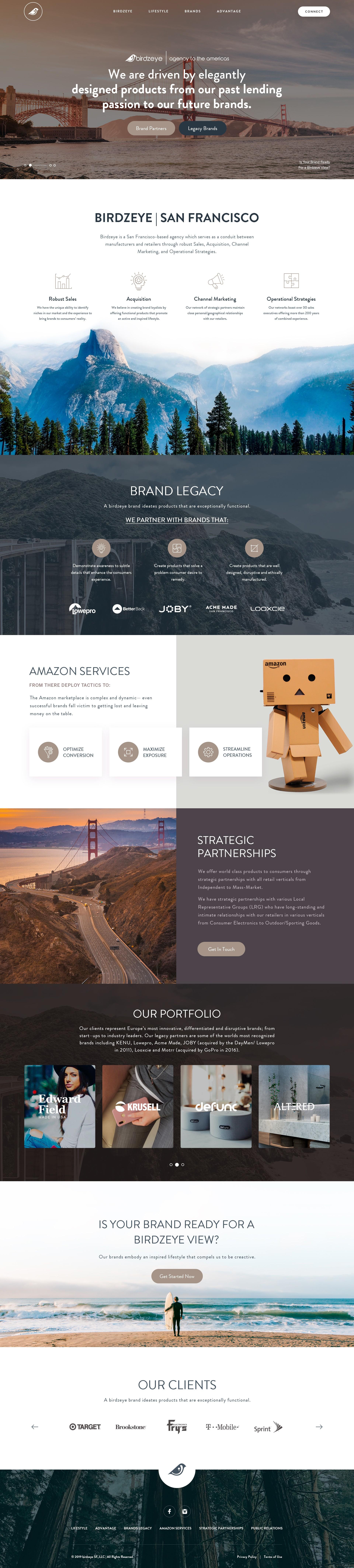 Birdzeye SF | agency of the americas | NEW WEBSITE DESIGN & CODING LIVE ONLINE
