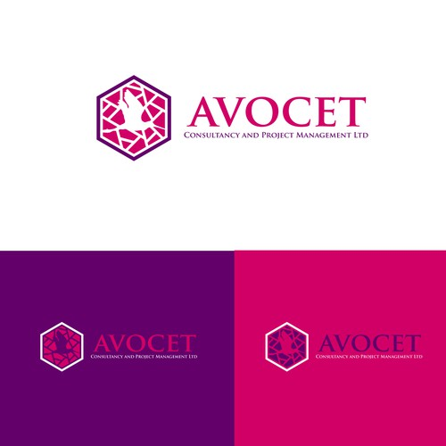 Avocet Consultancy