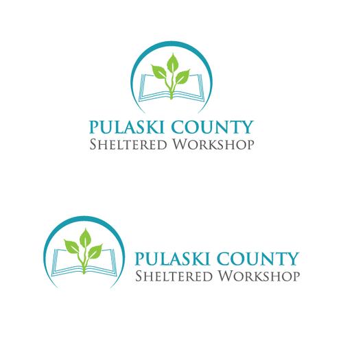 logo concept for pulaski county