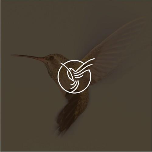 Hummingbird logo concept for DNZ