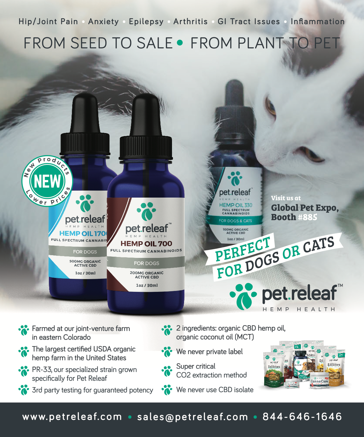 Pet Business - Full Page Ad — March