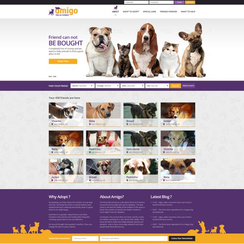 Make over the brazilian`s major Pet Adoption website design