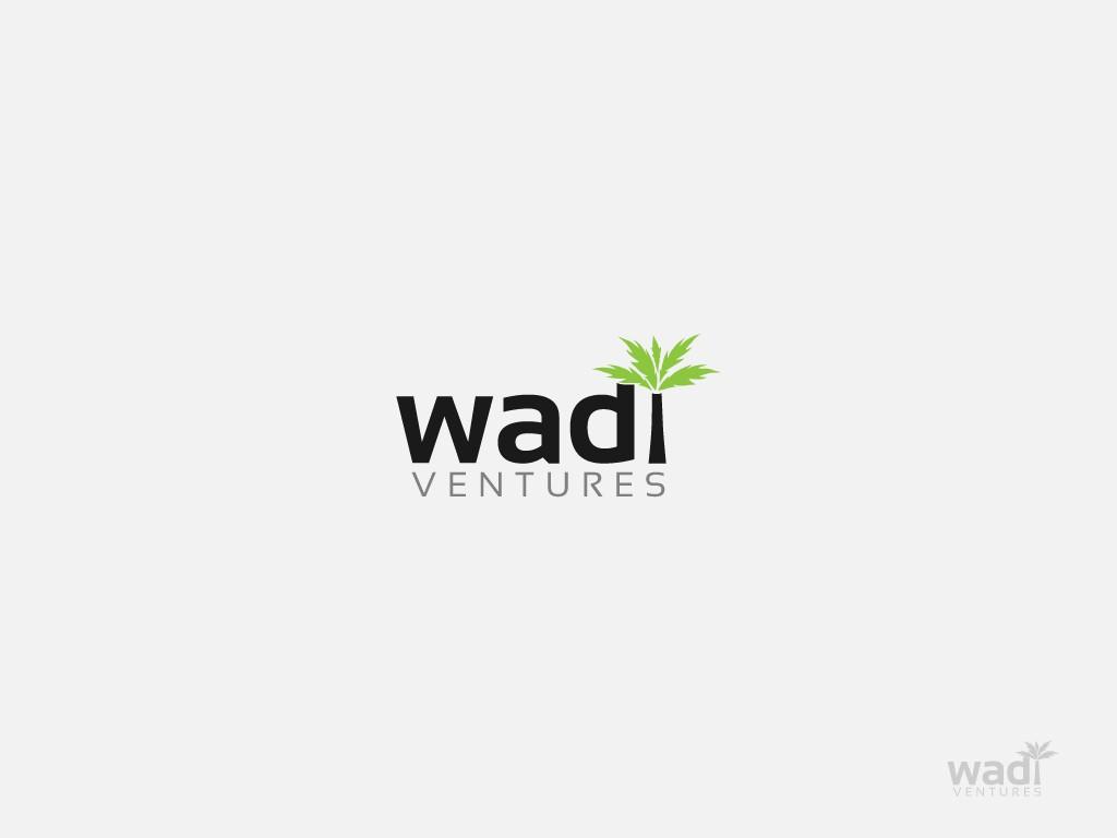 Wadi Ventures needs a new logo