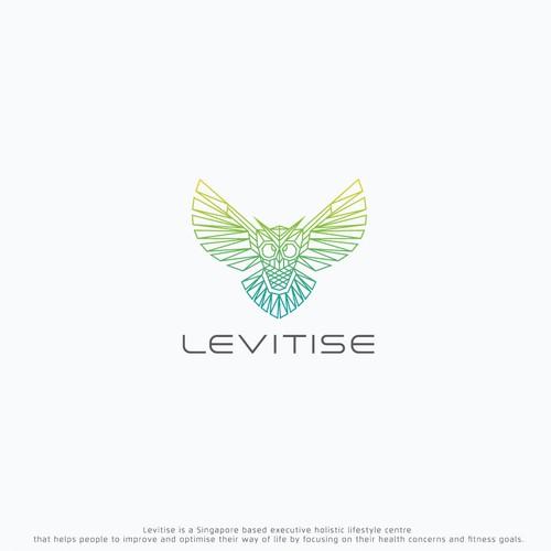 Geometric Owl line art logo for Levitise