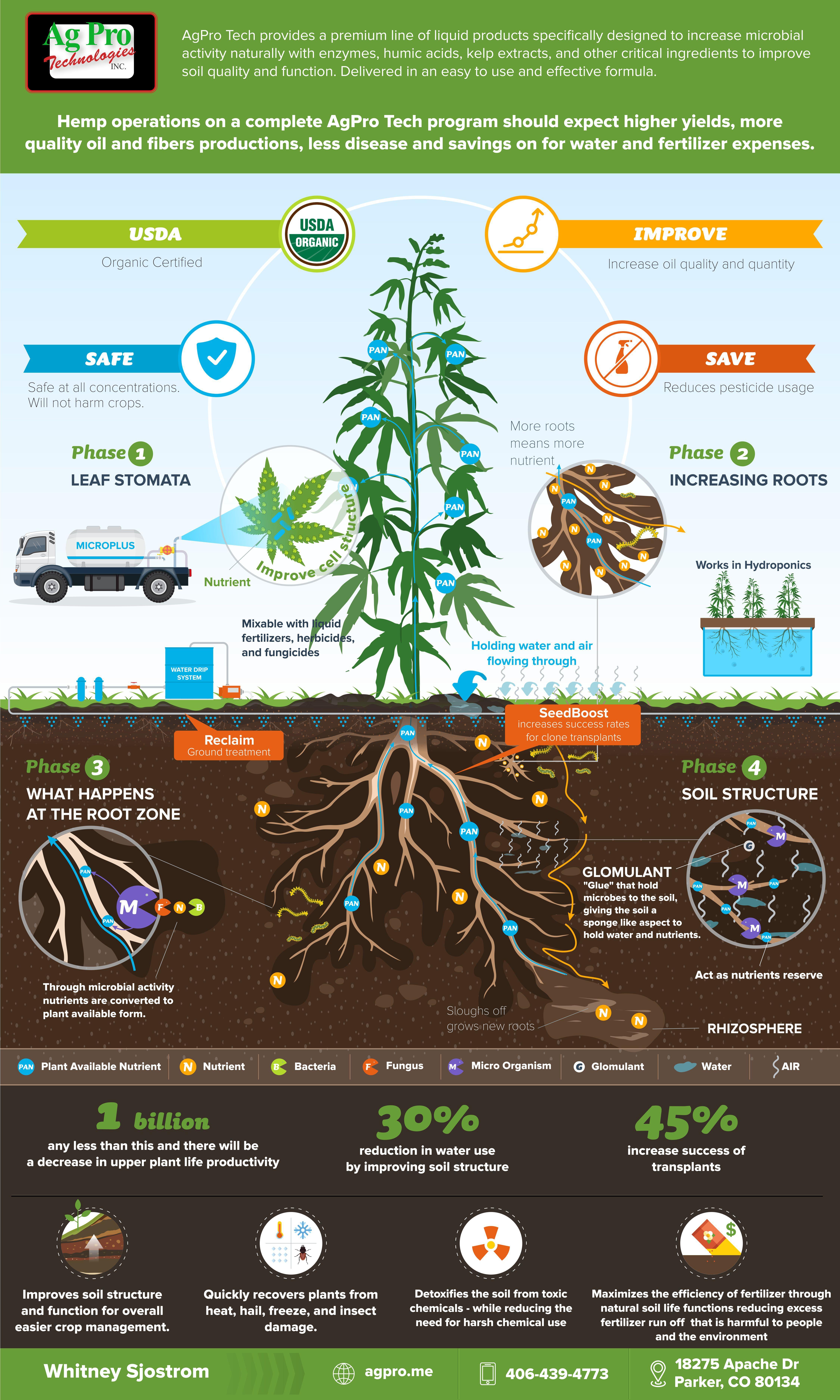 Hemp Infographic