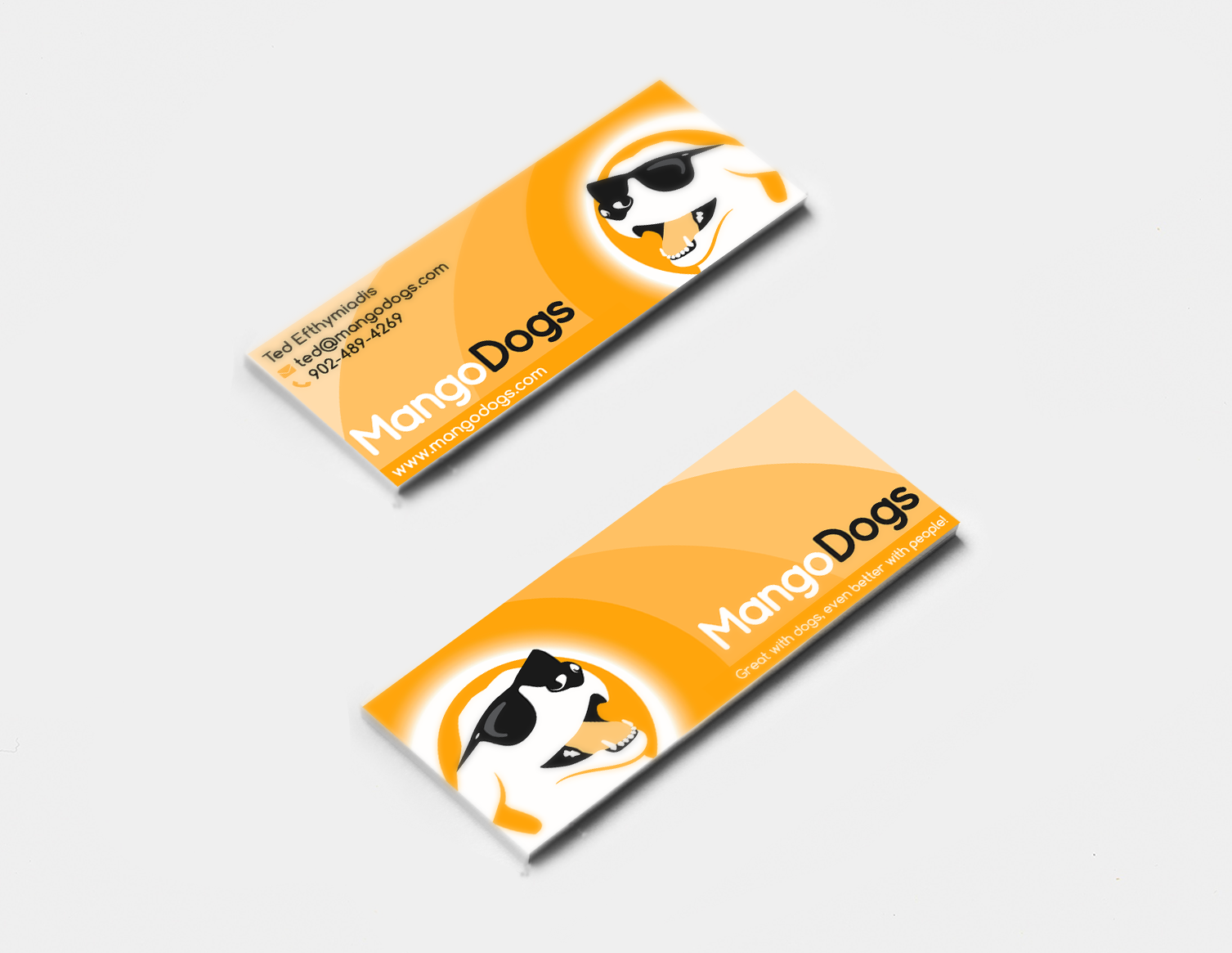 Hip, Funky, Colourful, Dog Training Company Business Card!