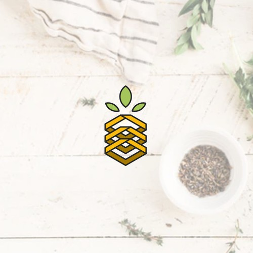 Logo Concept for Pineapple Roofing
