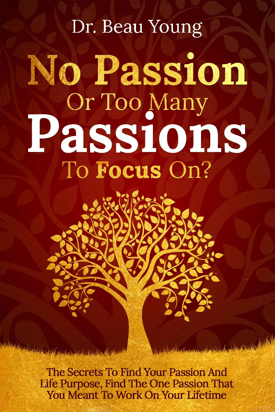 """book cover for the book named """"No Passion Or Too Many Passions To Focus On?"""""""
