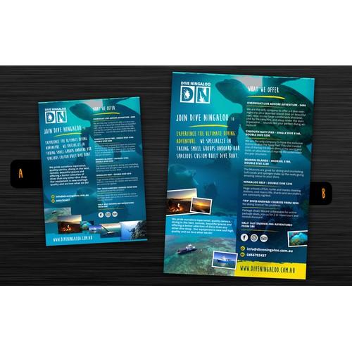 dive - poster / flyer