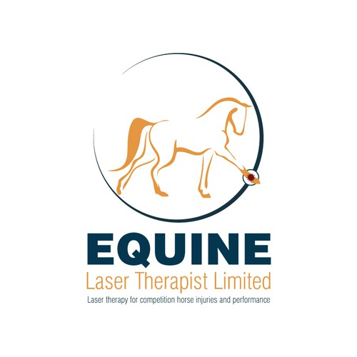 Create a equine related design for a new start-up company.