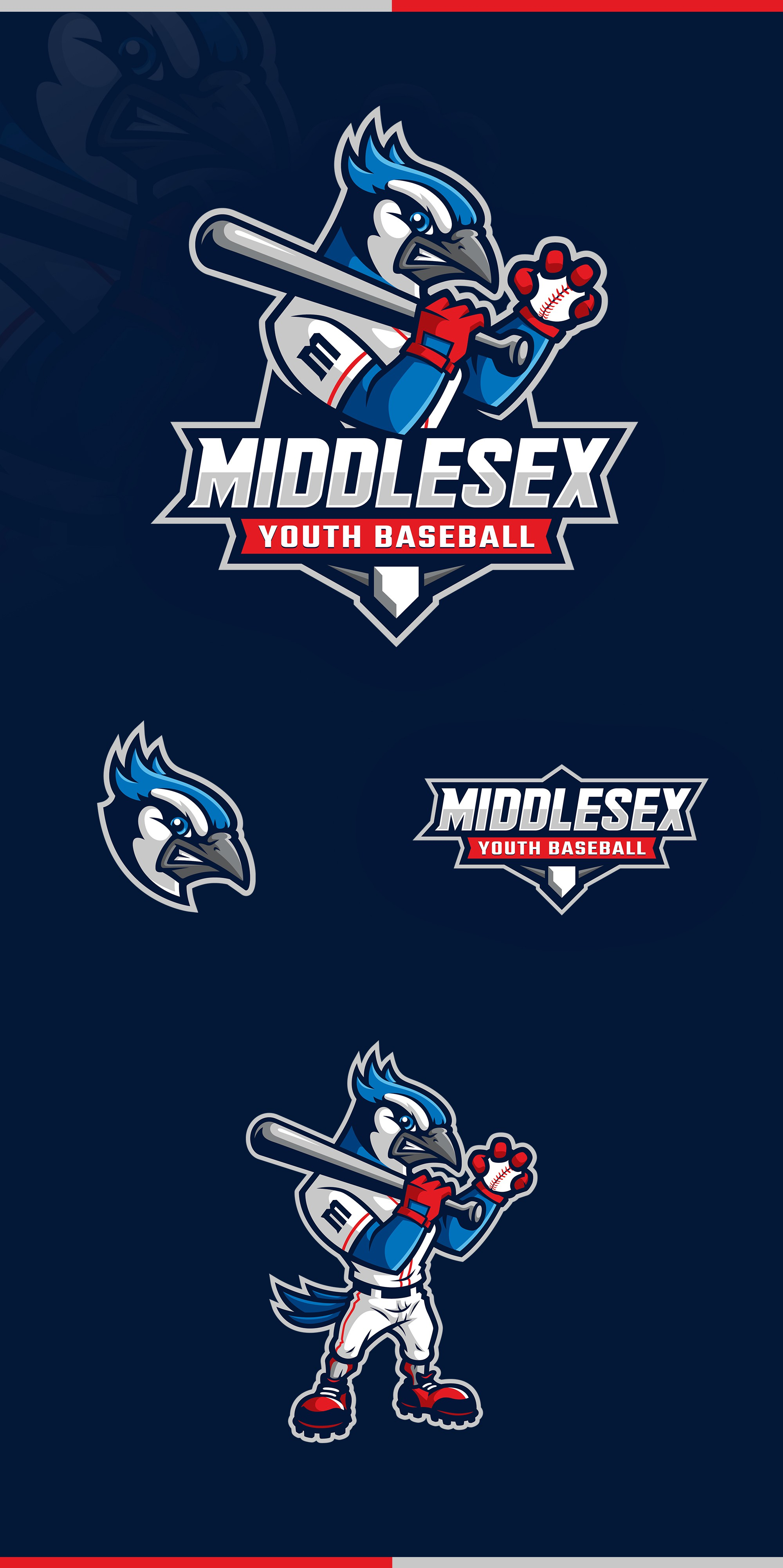 Help our Baseball League Stand Out From the Rest