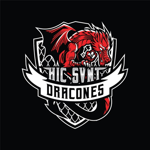 Dragon Logo for MMA Team