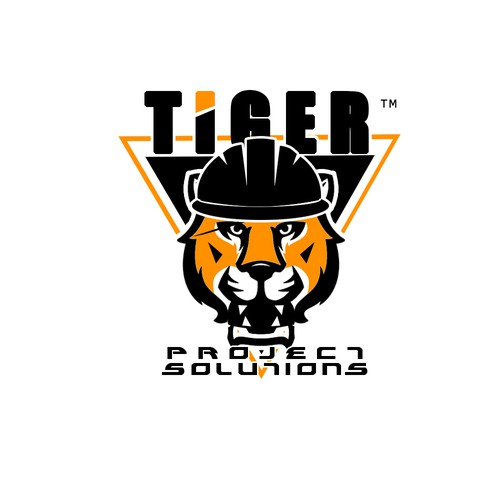 Logo concept for project solutions