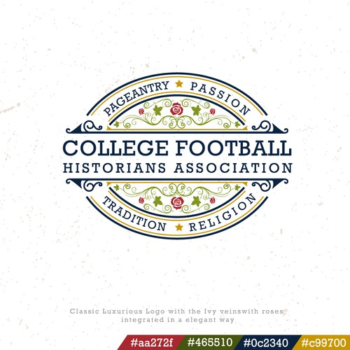 Emblem logo for American Football Association