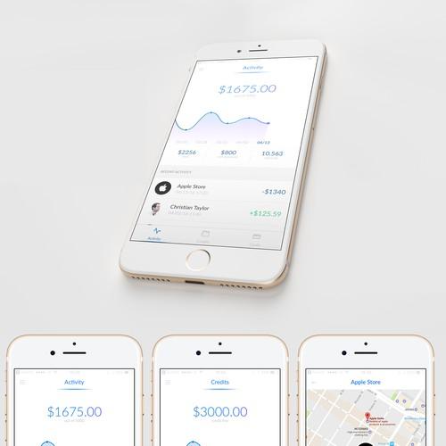 Credit card app concept