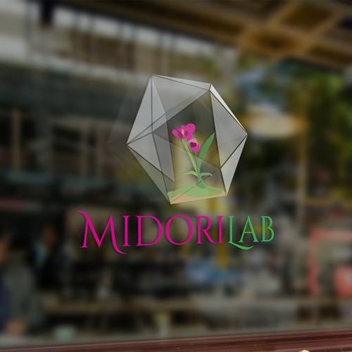 Midori Lab 3D logo concept