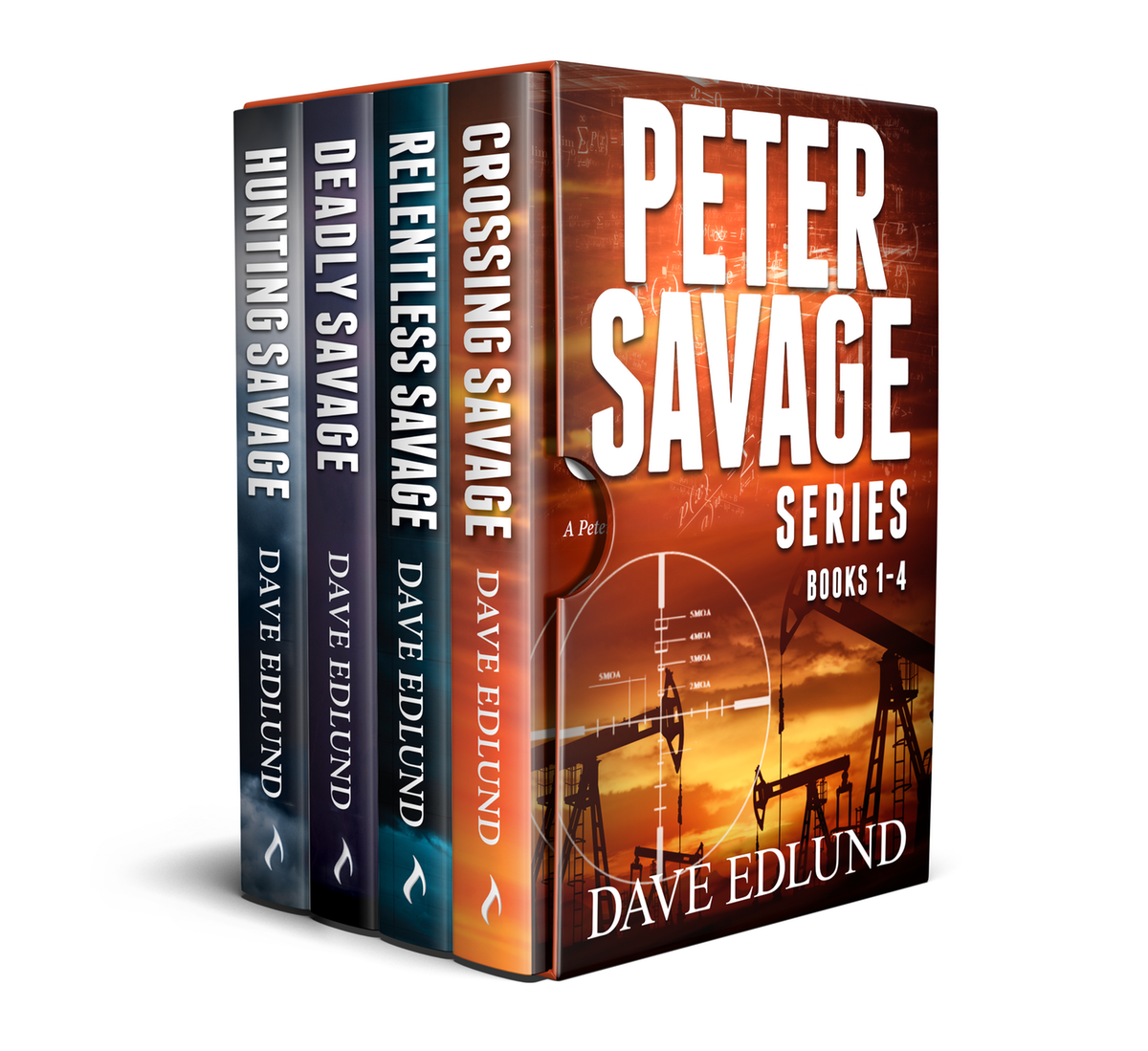 Box Set Graphic for 4 Titles in Series