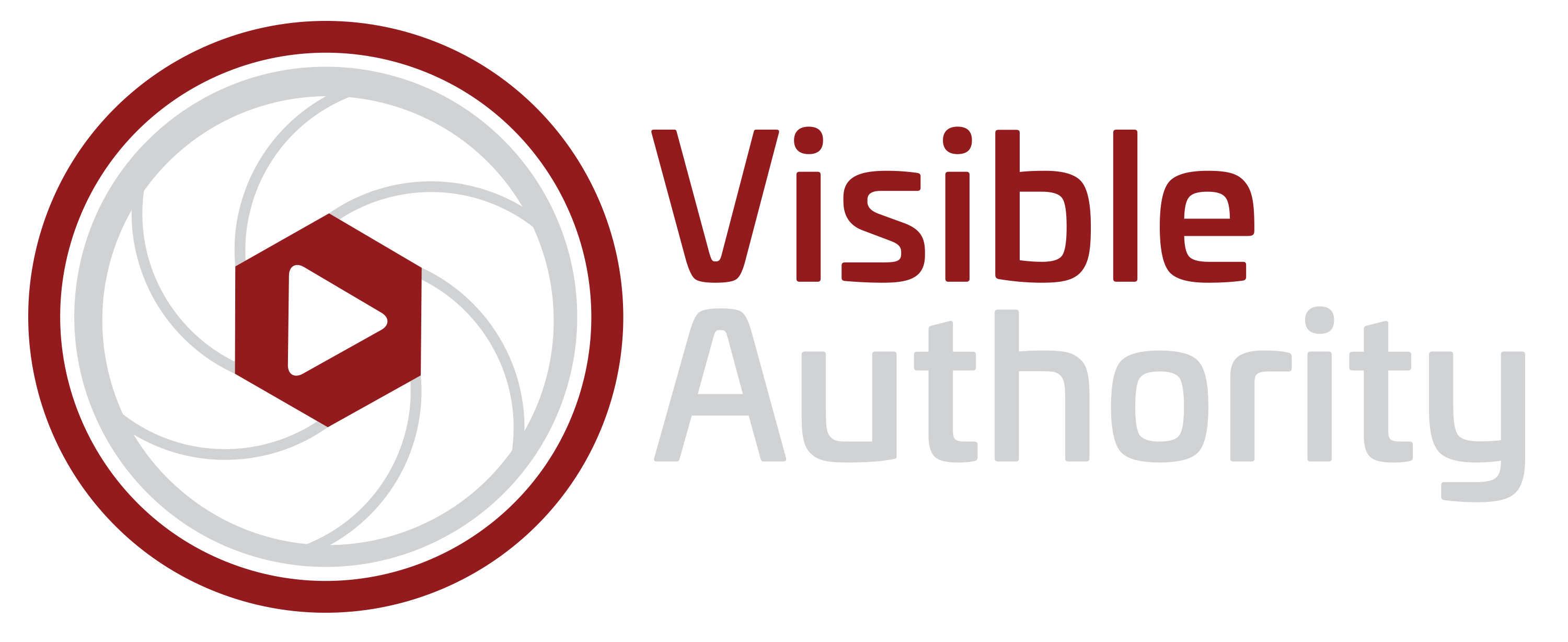 make visible authority logo light