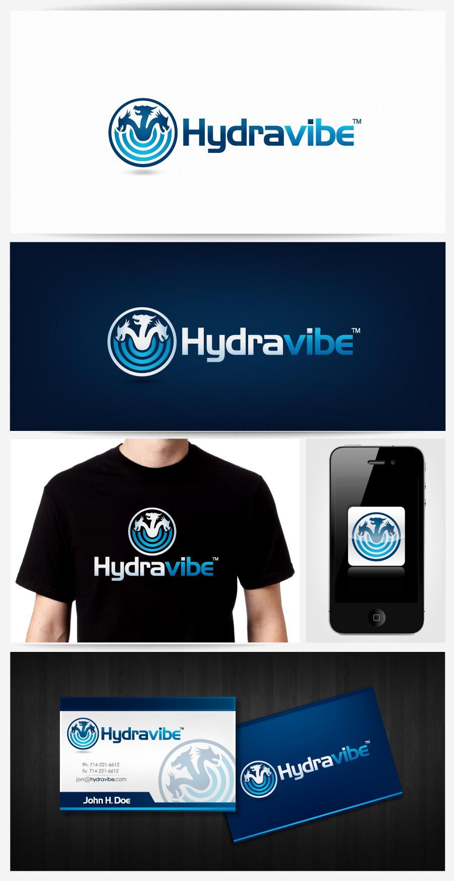Create the next logo for Hydravibe