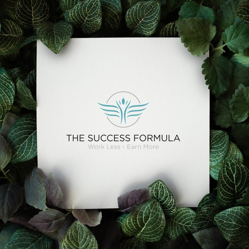 The Succes Formula