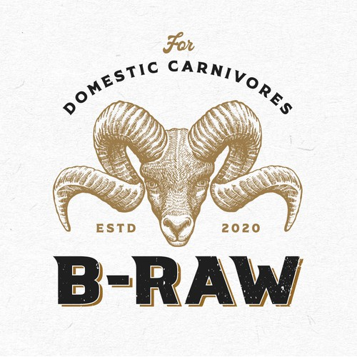 Logo design for B-RAW