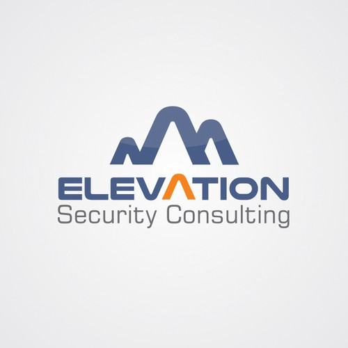Elevation of the standard logo to secure our company's future