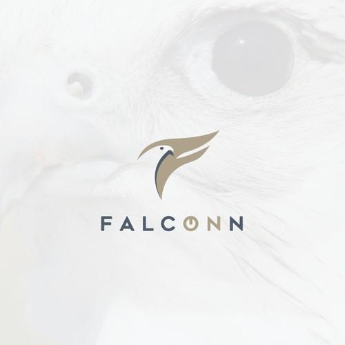 Falcon Character for Falconn Company
