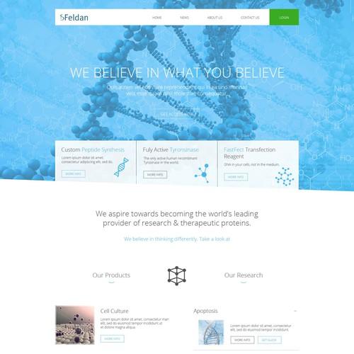 Feldan - Website Proposal