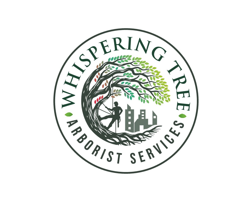 Arborist Company Needs Tree Logo