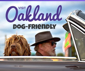 Dog-friendly Oakland contest