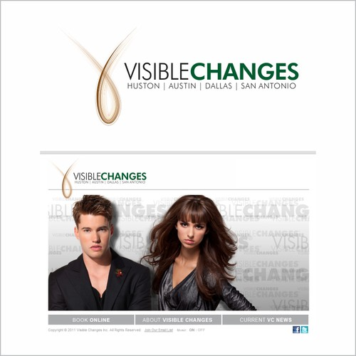 Create a new logo for Visible Changes Hair Salons