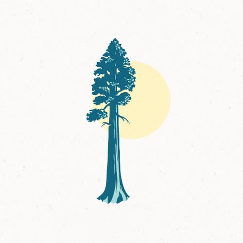 Majestic sequoia