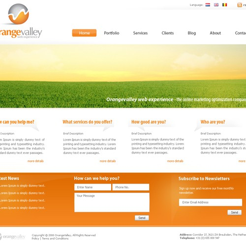Website design - new online marketing company - Orangevalley.nl