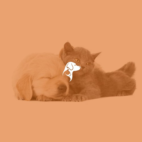 logo with a combination of cats and dogs, which symbolizes the kinship / continuity between animals and this logo is categorized as a pet.