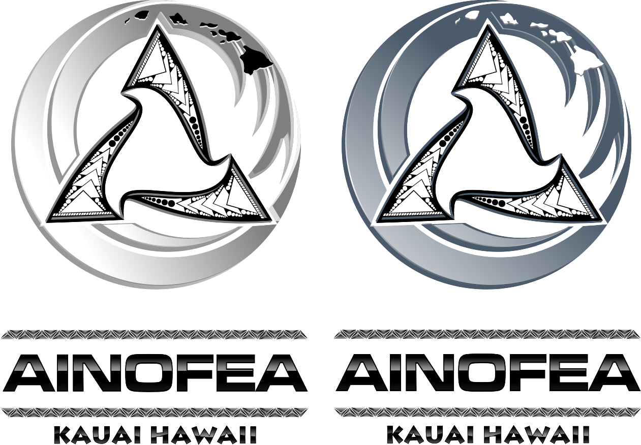 Create the next logo for Ainofea