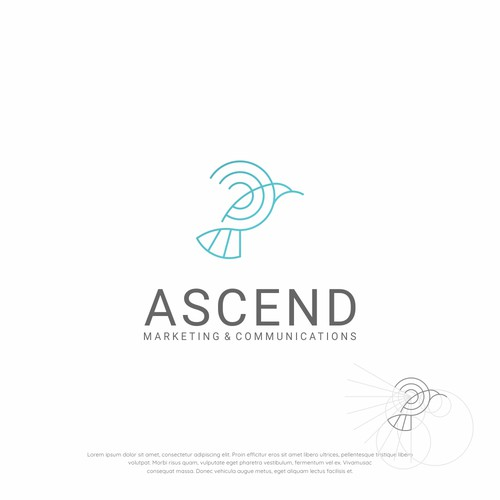 Bird Logo concept for Ascend
