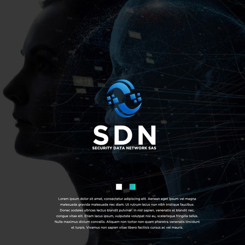 SECURITY DATA NETWORK