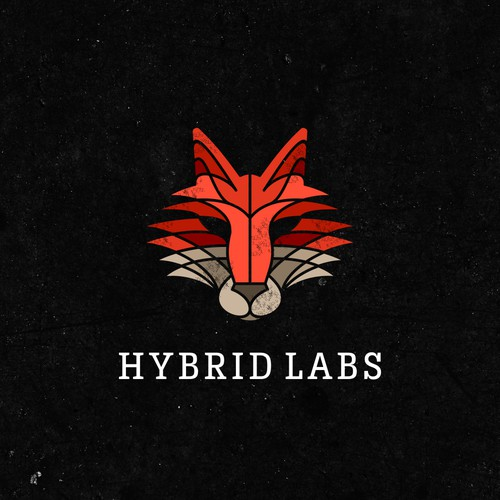 HYBRID LABS