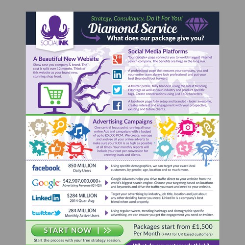 A4 size Infographic/Flyer for Digital Marketing Company