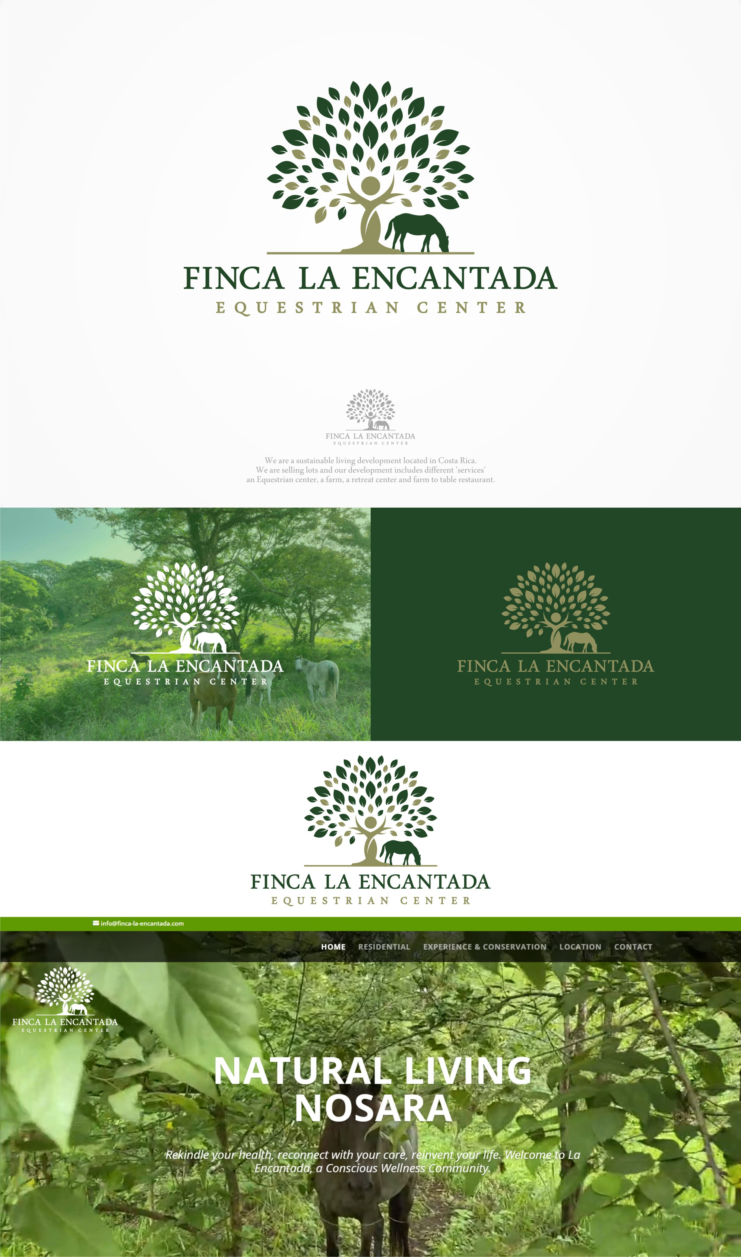 Logo for a Natural Living development proyect